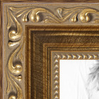 Ornate Gold Detail Picture frame