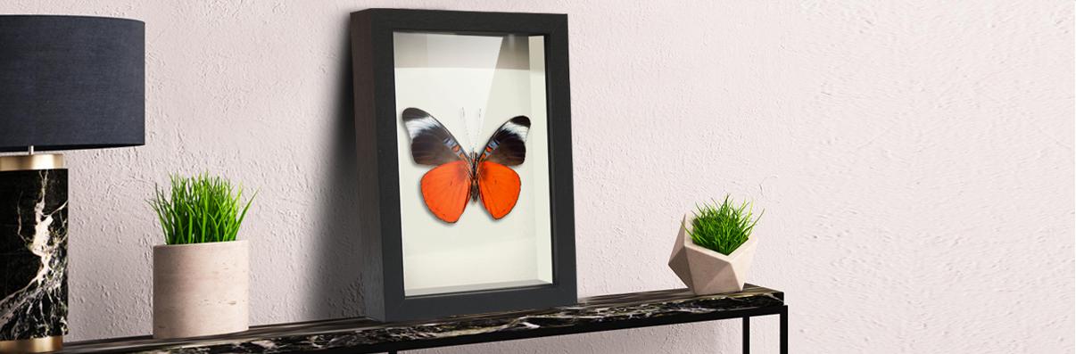 Custom Made Shadow Box Frames   Baby Memory Boxes   Keepsake Box